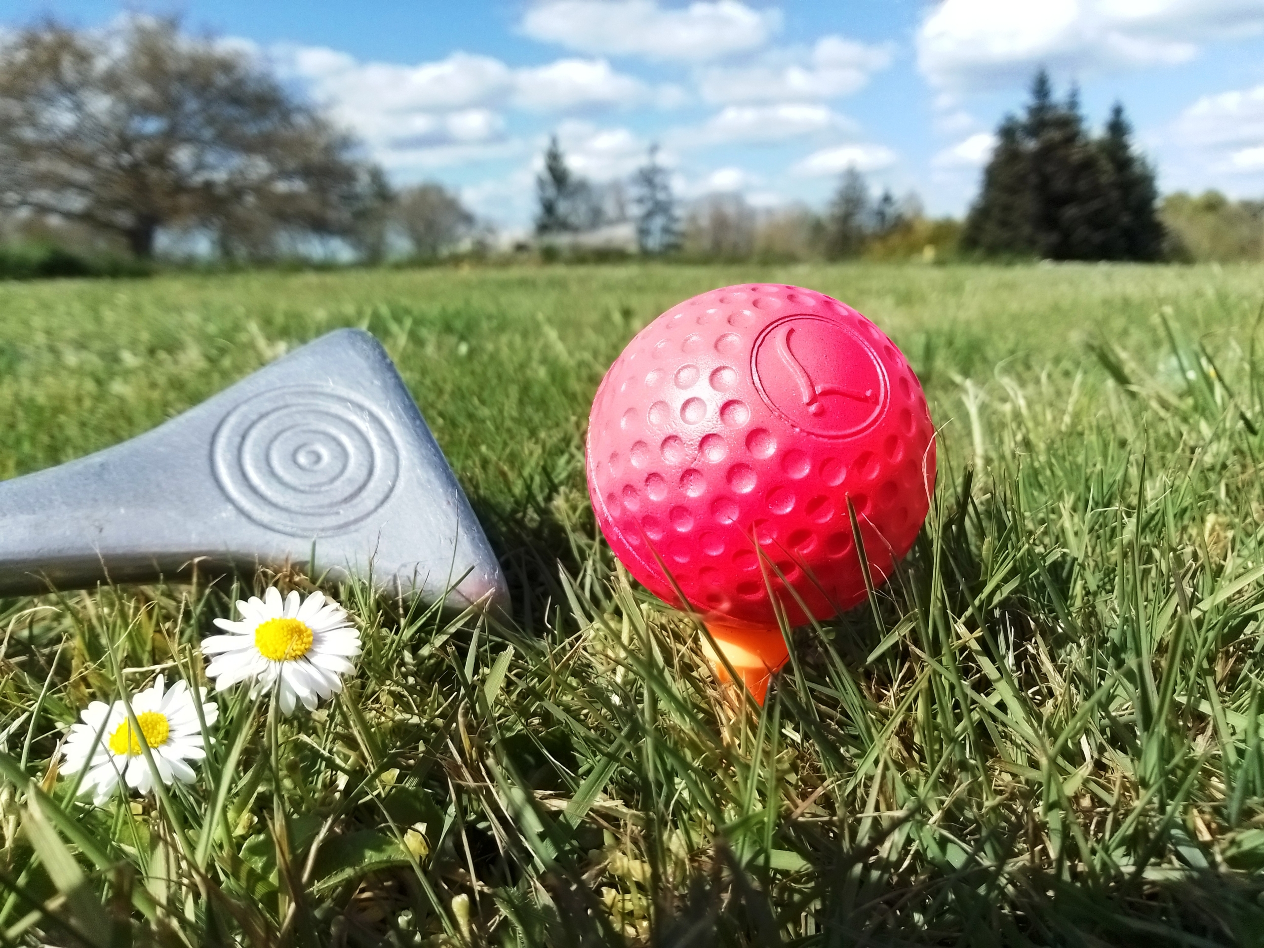 club-et-balle-rose-swin-golf-de-la-roche-en-ille-et-vilaine